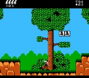 Play Asterix Online(NES)