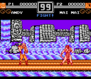 Play Fatal Fury 2 Online(NES)