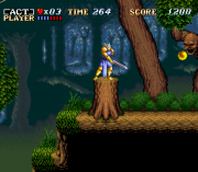 Cheats for ActRaiser SNES
