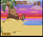 Cheats for Zero the Kamikaze Squirrel SNES